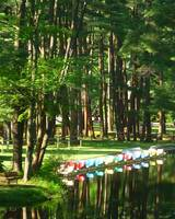 Northampton, Mass. - Look Park, Paddle Boats