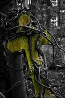 Highgate Cemetery Cross