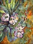 Rhododendron Watercolor and Ink by Ginette