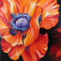 HEART OF A RED POPPY by Marcia Baldwin