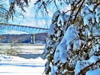 Rhinecliff Winter II