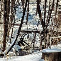 Winter Walking Bridge Art Prints & Posters by Gregory Bailey