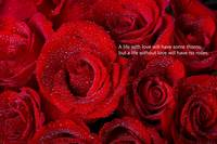Life Without Love Will Have No Roses
