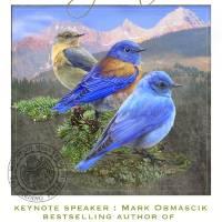 ute mountain mesa verde birding festival by r christopher vest