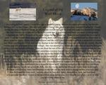 Legend of the White Wolf by Alan Sachanowski