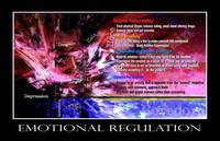 Emotional Regulation 2