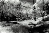 Trail To Eternity In Infrared