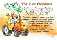The Five Freedoms