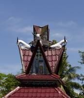 Sumatra0193 by Anne Harai