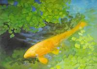 Yellow Carp in Green