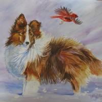 """Sheltie with Cardinal"" by foxbrush"