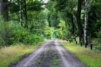 Brabant Backroads by Carol Groenen