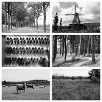 Timeless Brabant Collage by Carol Groenen