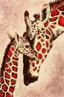 mother and baby giraffe in brown and red