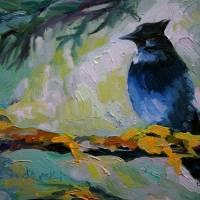 """Steller Jay"" by susanswiderski"
