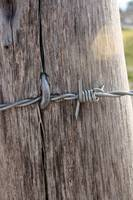 Barbed Wire Attached to a Fence