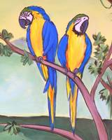 parrots - felix and fergus by tracie brown