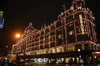 Harrods Department Store at Night