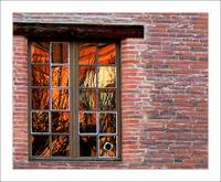 Reflets de briques / bricks & window