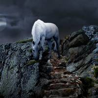 Kanthaka the White Horse by I.M. Spadecaller