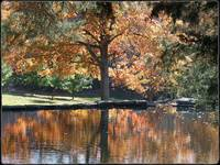 Autumn Reflections by Giorgetta Bell McRee