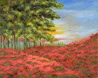 Oz Poppy Field