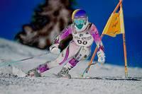 Alpine Giant Slalom Skier by Daniel Teetor