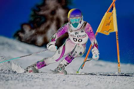 Alpine Giant Slalom Skier