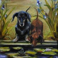 """Curious- two doxies see a frog by Violano"" by stella"