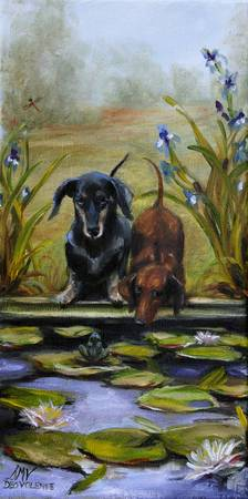 Curious- two doxies see a frog by Violano