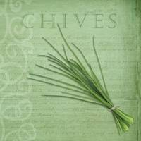Classic herbs series: Chives