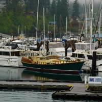 Foggy Harbor by John Tribolet