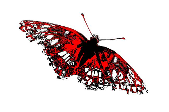 Butterfly black white and red series by betty northcutt