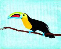Toucan at rest