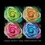 "Happy Mothers Day Hugs Kisses and Colorful Rose Sp by James ""BO"" Insogna"