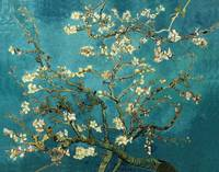 Vincent van Gogh - Blossoming Almond Tree