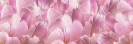Pink TulipScape
