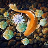 Koi Pond Art Prints & Posters by David Kacey