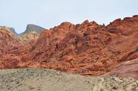 Red Rock Folds