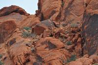 Red Rock Tumble