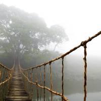 """Long Rope Bridge"" by SkipNall"