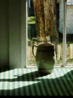 Pitcher by Window