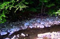 A Running Brook