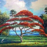 """""""Royal Poinciana Tree"""" by mazz"""