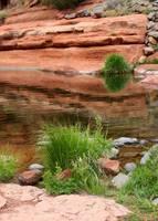 Still Waters at Slide Rock by Carol Groenen