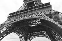 Ornate Eiffel Tower by Carol Groenen