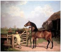 """Bay Ascham,"" a Stallion led through a Gate to a M"