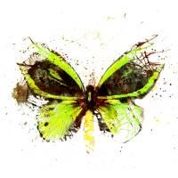 """""""Forgotten - Green Butterfly - Art - Digital Print"""" by artificialhappiness"""