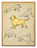 Animated Labrador Retriever