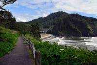 1 Oregon Coast Cove